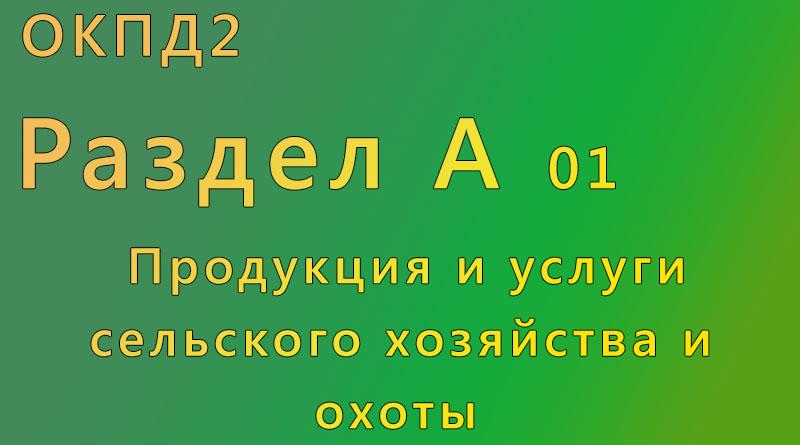 справочник, окпд, Камышин,г