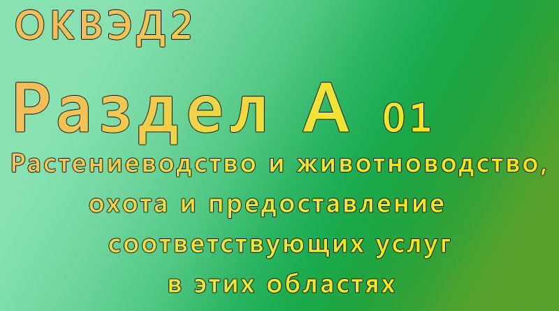 оквэд2, раздел, 01