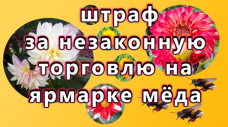 2191 ; ltytu ; ult