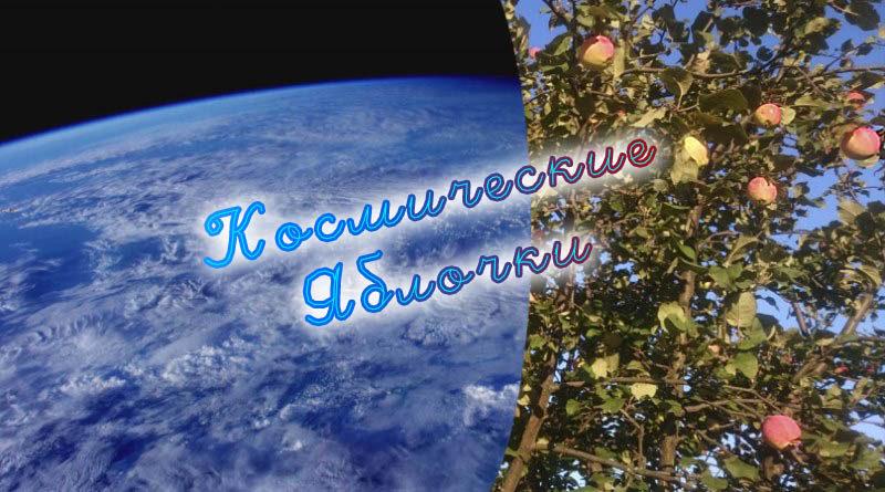 Wayòm Ini ; apipa.ru ; 20