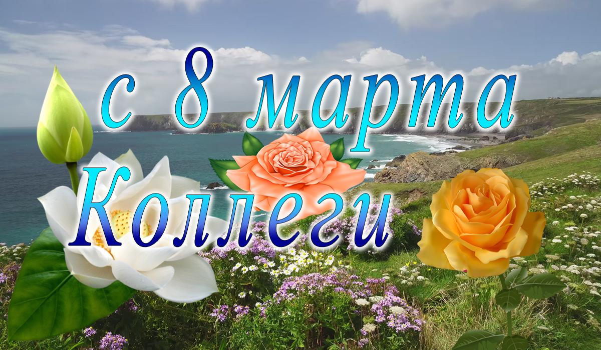 с 8 марта;коллега;png;apipa.ru