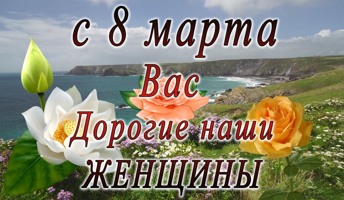 с 8 марта;сотрудники;анимация;apipa.ru